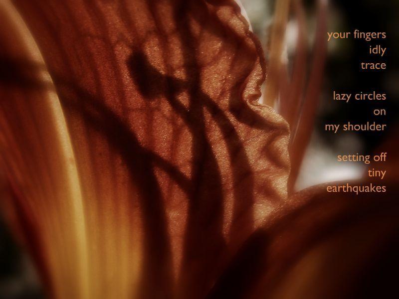 Tiny_earthquakes, lily, orange, poem, love, marcie vargas, picnik